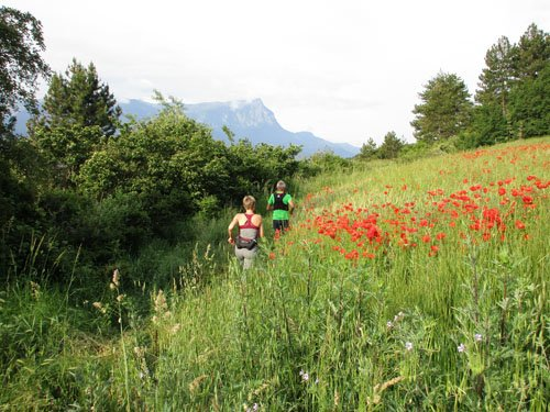 Trail Embrun 21km